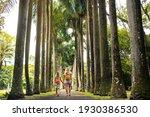 tourists walk along the avenue... | Shutterstock . vector #1930386530