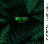 forest concept. fern leaves on... | Shutterstock .eps vector #1930486010