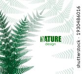 forest concept. fern leaves on... | Shutterstock .eps vector #1930486016
