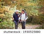 Cheerful Elder Couple Hiking In ...