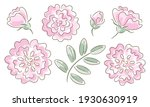 hand drawn rose flowers and... | Shutterstock .eps vector #1930630919