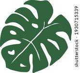 monstera leaf on white...   Shutterstock .eps vector #1930715339