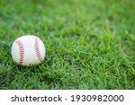 Close Up Baseball On The...