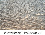 Tropical Sand Texture Pattern ...