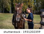 The Process Of Saddling A Horse ...
