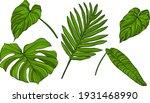 leaves isolated on white. green ...   Shutterstock .eps vector #1931468990