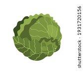 cabbage fresh vegetable healthy ... | Shutterstock .eps vector #1931720156