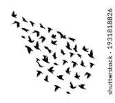 a large flock of flying birds....   Shutterstock .eps vector #1931818826