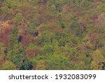 beautiful autumn landscape with ... | Shutterstock . vector #1932083099