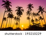 sillouette of coconut tree... | Shutterstock . vector #193210229