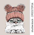 portrait of the funny cat in...   Shutterstock .eps vector #1932172916