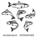 Salmon or trout fish isolated icons of vector fishing sport and seafood design. Ocean or sea water animal symbols and emblems, jumping or swimming fish of atlantic, coho, chinook and pink salmons
