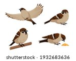 set of sparrows in different...   Shutterstock .eps vector #1932683636