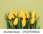Yellow Tulips On A Green...