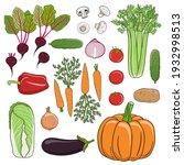 set of vegetables. beets ...   Shutterstock .eps vector #1932998513