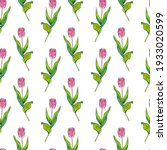pattern with tulips  beautiful...   Shutterstock . vector #1933020599