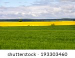 rape field at the sunrise with... | Shutterstock . vector #193303460