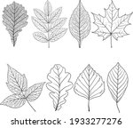 set sketches silhouettes leaves ... | Shutterstock .eps vector #1933277276