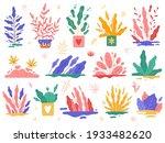 minimal plants. trendy garden...   Shutterstock .eps vector #1933482620