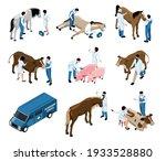 farm livestock veterinary... | Shutterstock .eps vector #1933528880