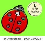 Cute Nice Ladybug  Ladybird....