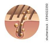 hair renew  shine  glossy... | Shutterstock .eps vector #1934322350