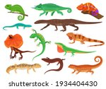 Set Of Colorful Lizards....