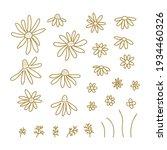 chamomile wildflower line art...   Shutterstock .eps vector #1934460326