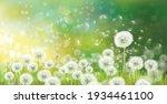 vector spring bokeh background...   Shutterstock .eps vector #1934461100
