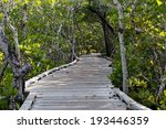 Wooden Walkway Leads Through...