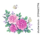 Hand Drawn Pink Rose Flowers...