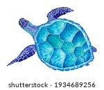 Watercolor Sea Turtle. Hand...