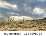 Arizona Desert Landscape With...