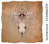 Vector illustration with hand drawn deer skull, dead head moth and Sacred geometric symbol on vintage paper background with torn edges.  Image in sepia  and red color.