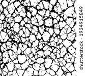 cracked grunge texture vector... | Shutterstock .eps vector #1934915849