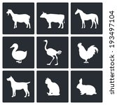 pets icon set | Shutterstock .eps vector #193497104