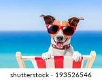 dog relaxing on a fancy deck... | Shutterstock . vector #193526546