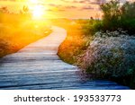 Wooden Path Over Dunes At A...