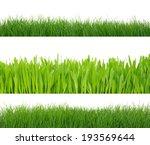 green grass isolated on white...   Shutterstock . vector #193569644
