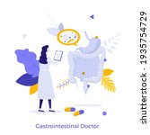 gastroenterologist  doctor or... | Shutterstock .eps vector #1935754729