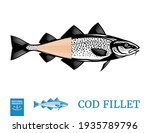 vector cod fish illustration... | Shutterstock .eps vector #1935789796