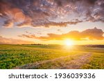 Sunset At Cultivated Land In...