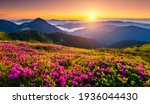 Attractive Summer Sunset With...