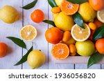 Fresh Citrus Fruits  Lemons ...
