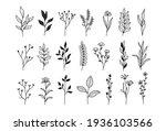 tiny plantsand flowers  set of...