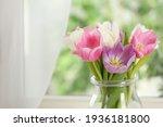 Beautiful Fresh Tulips Near...