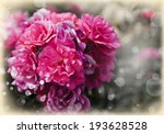 beautiful pink roses on natural ... | Shutterstock . vector #193628528