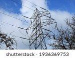 Electricity Pylon In Woodland ...