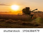 Harvester In A Wheat Field On A ...