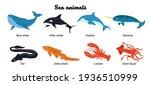 Undersea Inhabitants....